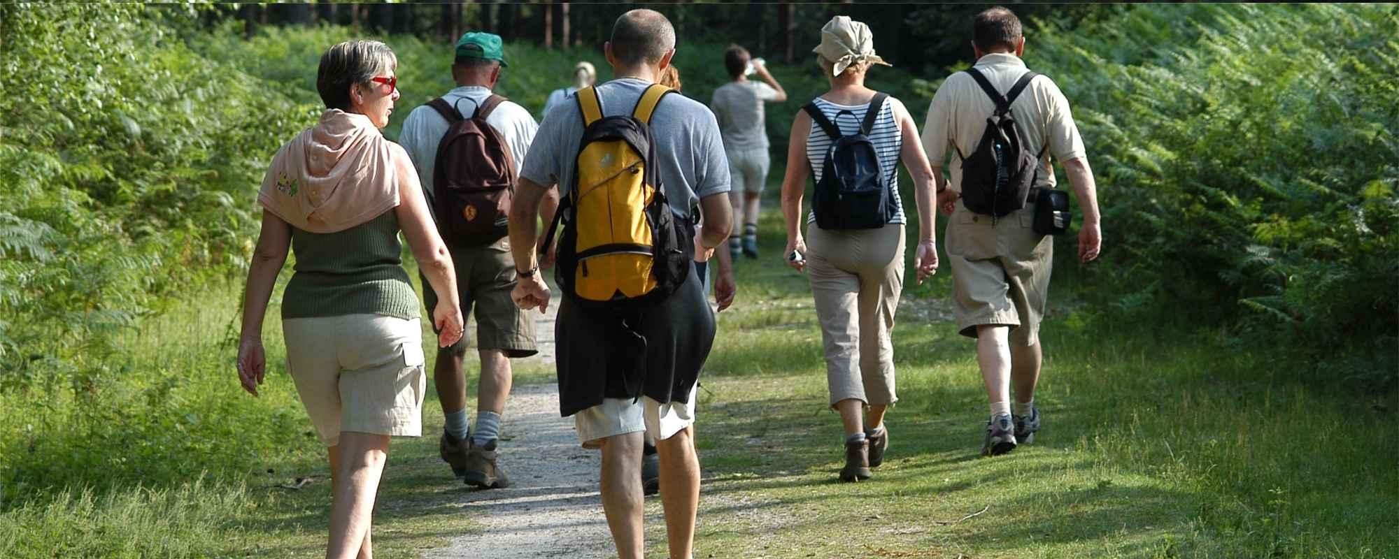 randonnée-pedestre bandeau