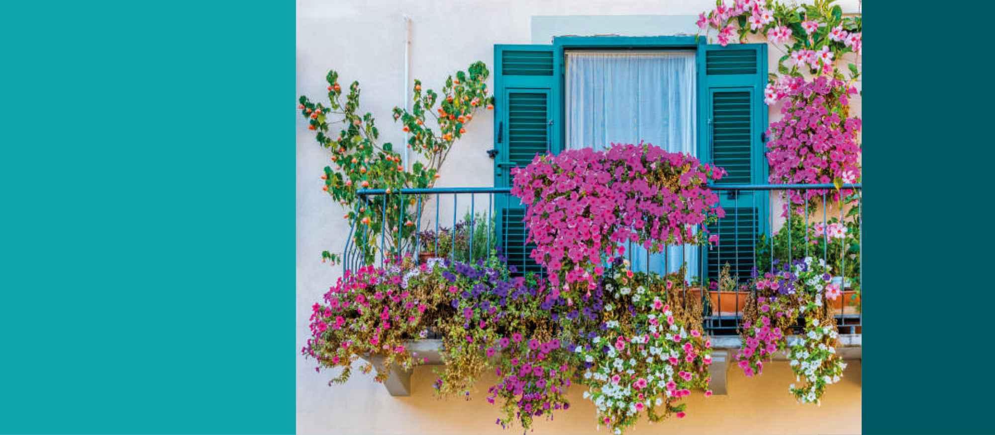 bd_concours_maisons_balcons_fleuris
